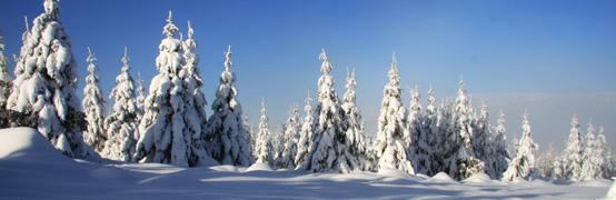 Fotos: Skitrainingslager im Riesengebirge - Teil II