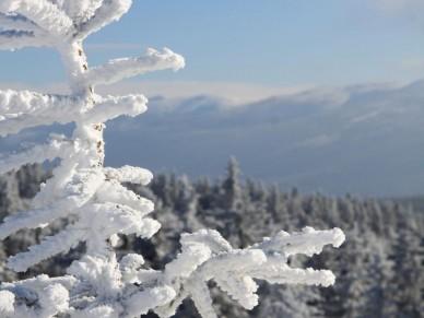 Natur pur im Riesengebirge