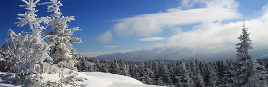 Die Geheimnisse des Skilanglaufens - Teil II