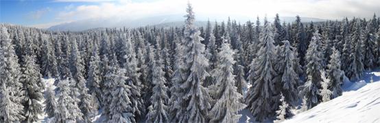 Panorama-Blicke im Riesengebirge